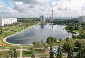Golyanovsky Stagno: Vacanze in città