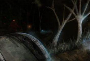 """Computer game """"Dark Souls 2. Hunter Grove"""": descrizione e posizione di passaggio"""