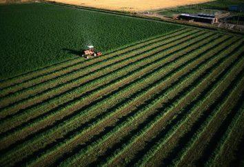 Uso consentito di terreni agricoli. Legge federale sul fatturato dei terreni agricoli