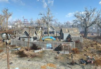 "«Fallout 4: O fator humano "". busca passagem"