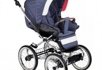 """Cadeira de rodas """"Navington Caravella"""": descrição, características, especificações e comentários"""