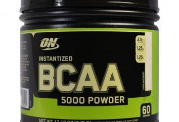 Nowicjusz: jak brać BCAA 5000 Powder w proszku lub kapsułek?