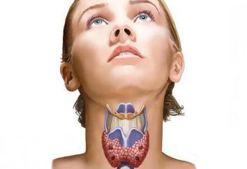 Izoehogennoe formazione di tiroide – che cos'è?