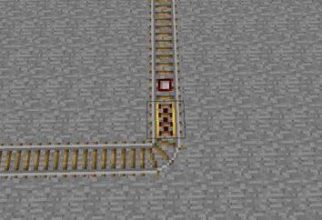 """Dettagli su come """"Maynkraft"""" fare in treno"""