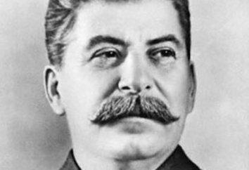 Il sistema politico in URSS negli 30 anni di regime totalitario