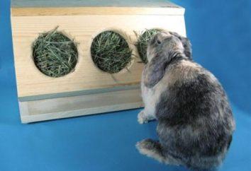 Senik – un dispositivo para conejos. ¿Cuáles son senik y la forma de hacerlo por sí mismo?