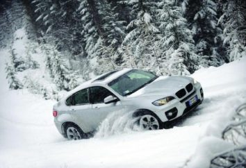 Co dobre opony zimowe nadaje się do rosyjskich warunkach? Przegląd najlepszych modeli w 2013 roku