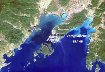 Dove è Ussuri Bay?