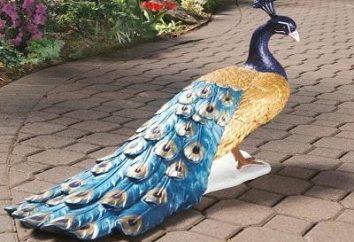 Pavão de garrafas de plástico – um ornamento fantástico para o jardim