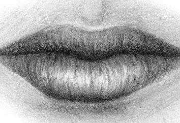 Wie Lippen zu zeichnen. Unterricht für Anfänger