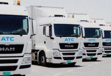 empresas de transporte em São Petersburgo: lista e prazos de entrega
