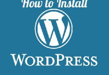 Instalacja WordPress hosting – wszystko jest łatwe i proste!