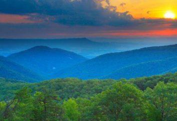 Virginia – Stati Uniti d'America Stato: la storia, la descrizione e punti di interesse