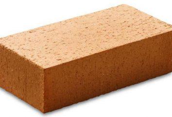Comment faire une fondation en briques avec ses propres mains