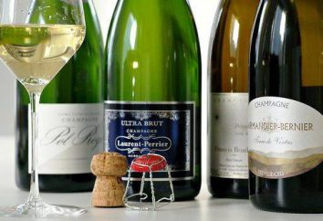 champagne Elite: marque, nom, photo