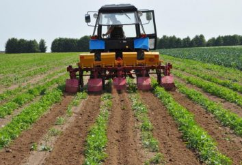 Kultivatoren für die volle Bodenbearbeitung für Kulturpflanzen Aussaat