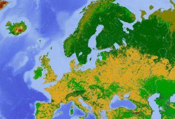 Norte de Europa: recursos naturales, el clima, la ubicación geográfica