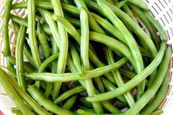 Bonito cocinar judias verdes congeladas im genes ensalada - Como cocinar judias verdes frescas ...