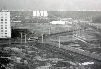 Ivanovo Bezirk (Moskau): Geschichte und Beschreibung