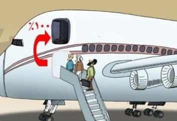 billete de avión electrónico: cómo utilizar? Cómo comprar, alquilar o del check billete electrónico en el avión?