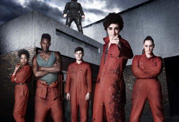 """serie británica de televisión """"Despojos"""": actores, roles y la trama"""