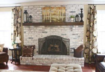 Brique de cheminée: photos, dessins et instructions. briques de cheminée avec leurs mains