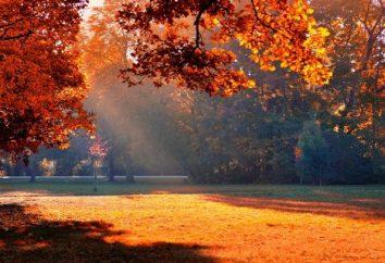 Incredibile Sun – in autunno per quello che?
