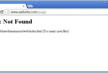 """Error 404: cómo fijar? Error 404: """"Página no encontrada"""""""