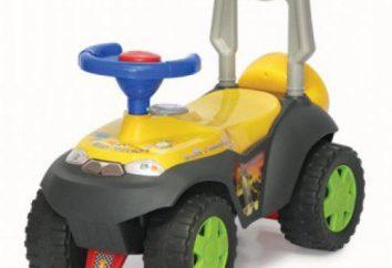 Máquina de cadeira de rodas para crianças a partir de 1 ano: avaliações, fotos