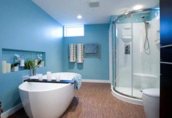 Peindre les murs dans la salle de bain: bonnes idées, la conception et recommandations