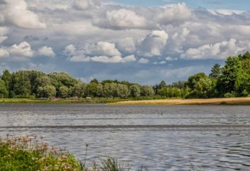 Izhora River: caractéristiques et pêche