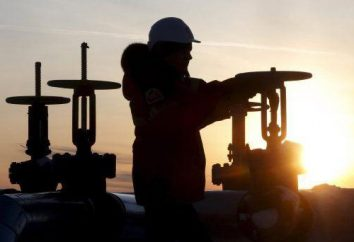 West-Siberian base di olio: posizione geografica, caratteristiche, prospettive, problemi, i consumatori