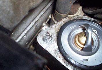 Zmień termostat Toyota własnymi rękami