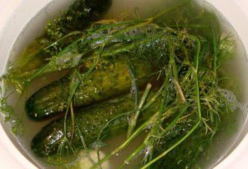 Come cucinare cetrioli svezheprosolnye