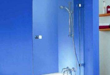 Praktyczne podejście do projektowania mieszkania: kąpieli szklanej migawki