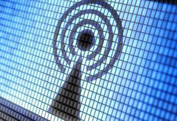 Daño WiFi-router. ya sea Wi-Fi es perjudicial para nuestra salud?