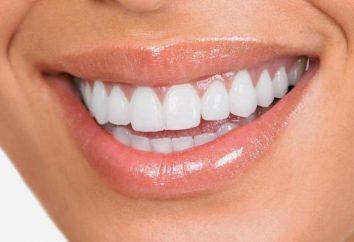 A boca higienizado – o que significa isso? Prevenção de doenças dentárias. consulta do dentista