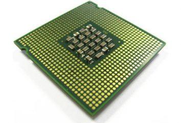 Jakie urządzenie komputerowe przetwarzanie danych produkowany? procesor komputera