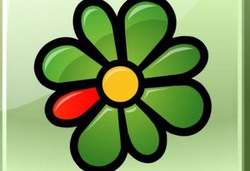 Jaki jest numer ICQ: od rejestracji do komunikacji
