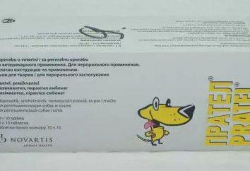 """Das Medikament """"Pratel"""" für Hunde: Gebrauchsanweisungen, Zusammensetzung und Bewertungen"""