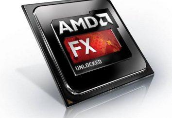 Przegląd sześć procesory AMD FX-6100. specyfikacje techniczne, testy i opinie