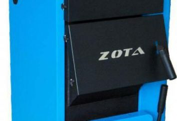 """Caldeira de combustível sólido """"Zot"""": revisão e feedback"""