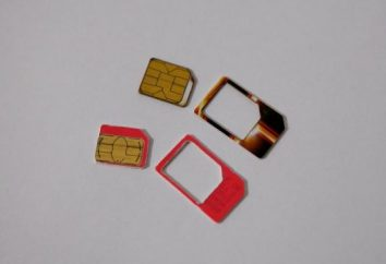 Aprenda a cortar la tarjeta SIM
