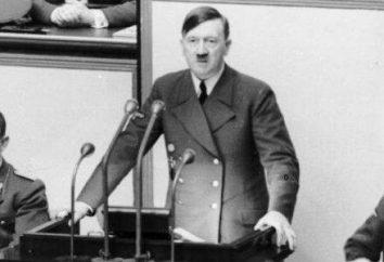 Os homólogos de Hitler: quantos havia?