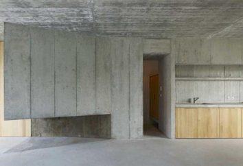 Konstrukcja ramki monolityczny domów