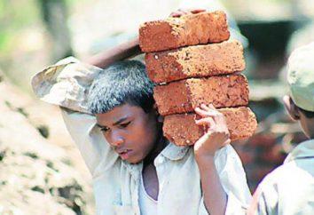 Sfruttamento del lavoro minorile: la legislazione, le caratteristiche e requisiti