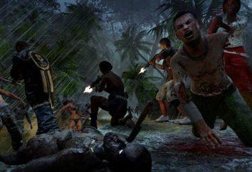 Como jogar Dead Island na rede via Hamachi