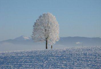 Les mois d'hiver sont associés aux phénomènes de la nature: l'ancien nom