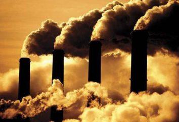 recursos ambientais. Os problemas ambientais e as formas de resolvê-los