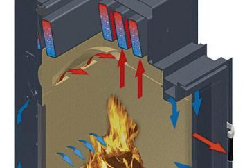 Chaudière à combustible solide avec un circuit d'eau. Chaudières à combustibles solides: Caractéristiques, Prix